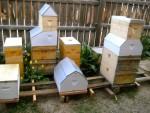 Barn hives