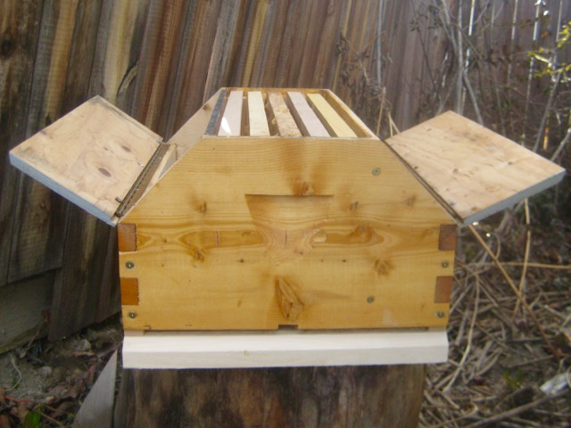 Barn hive with open bays
