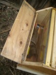 Barn hive storage compartment with observation window